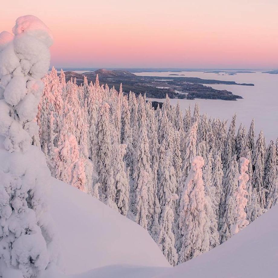 FINLAND TROPHY